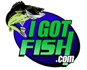 i got fish logo designed by ontrack graphics
